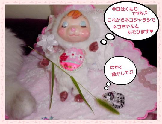 花ブ2013611-1