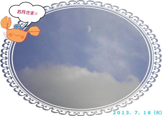 花ブ2013717-2