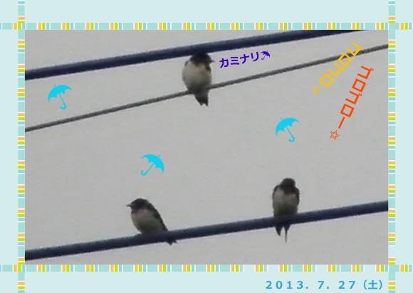 花ブ2013728-2