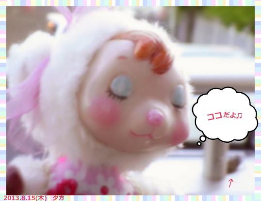 花ブ2013816-2