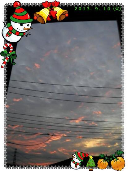 花ブ2013911-2