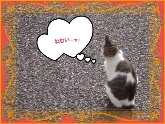 花ブ201412-2