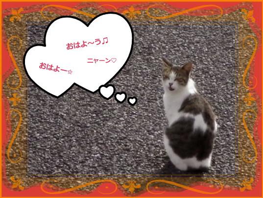 花ブ201416-1