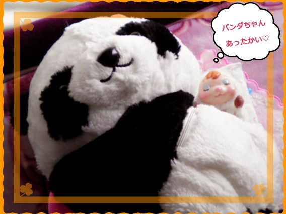 花ブ2014110-2