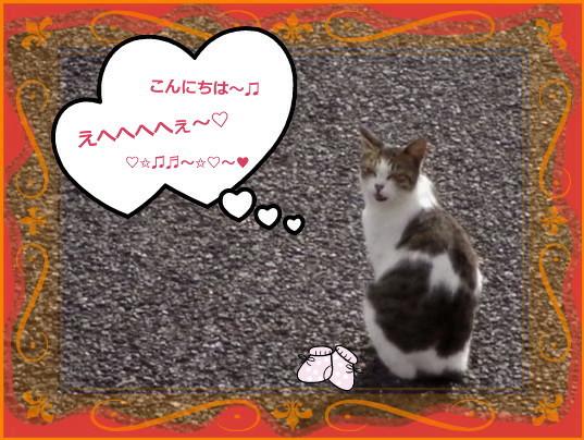 花ブ20141 16-2