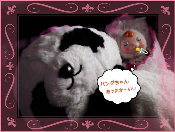 花ブ20140204-2