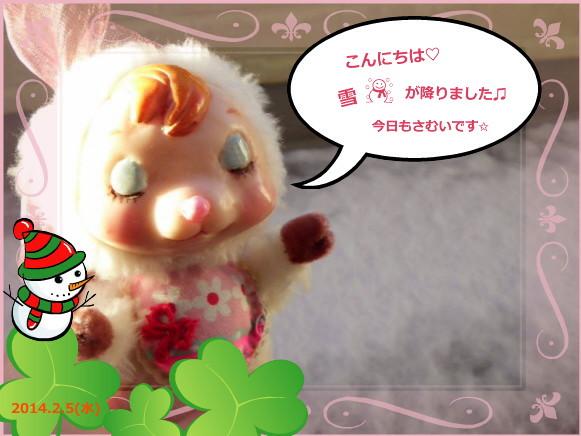 花ブ20140205-2
