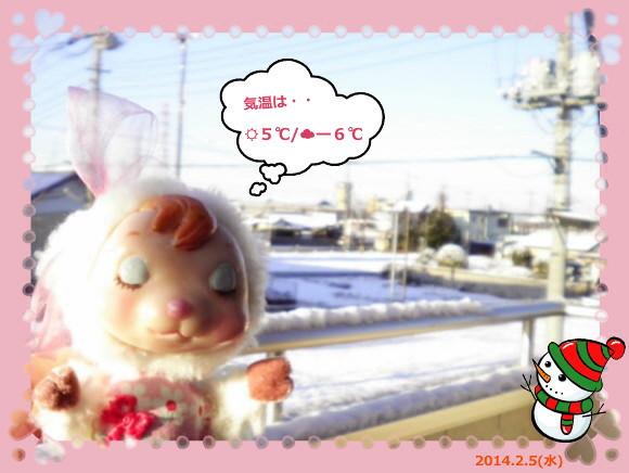 花ブ20140205-3