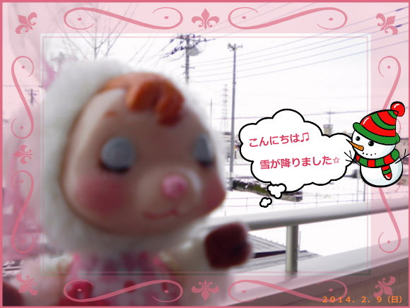 花ブ20140209-1