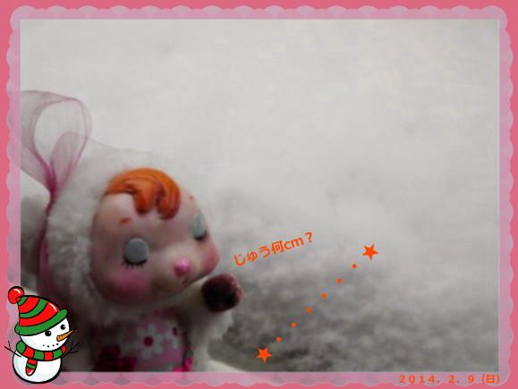 花ブ20140209-2