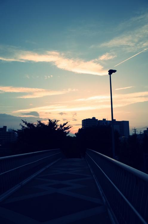 Photo-526