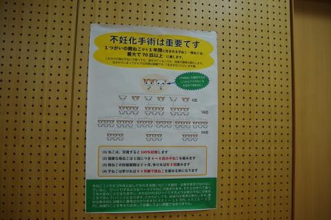 148動物愛護週間20130929