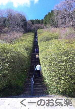 冨士霊園1