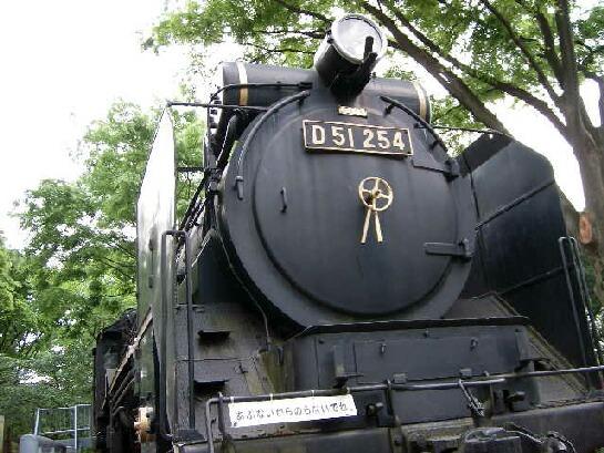 D51254 038