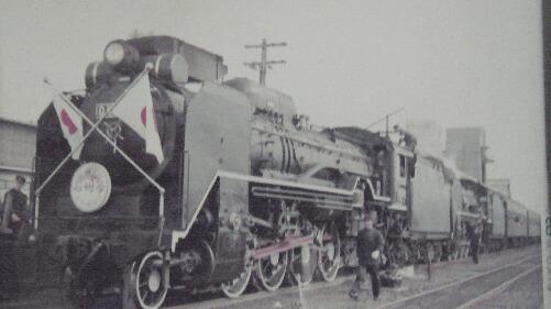 rokomodon27 002