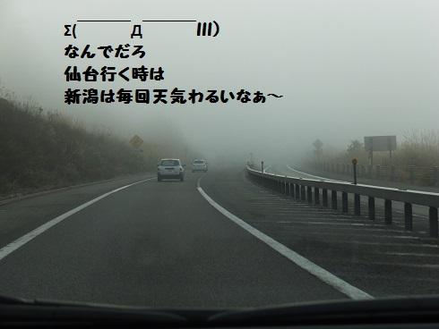 20131103mu27.jpg