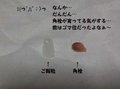 20131122mu1.jpg