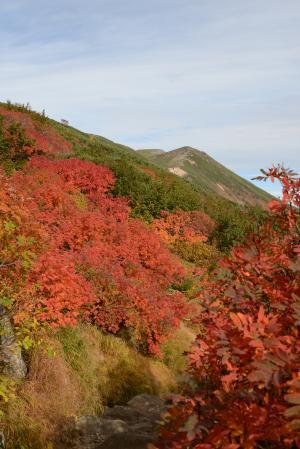 御嶽の紅葉