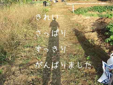 IMG_8706.jpg