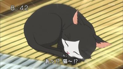 ピアノに猫??