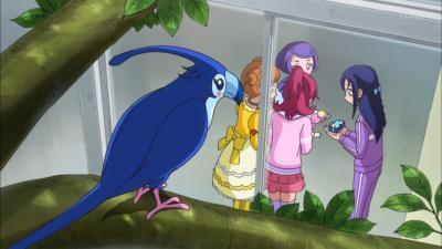 この青い鳥はなんだ?