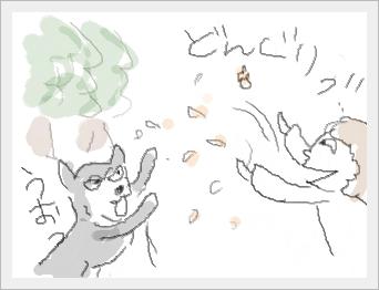 donguri3.jpg