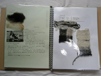 13-199.jpg
