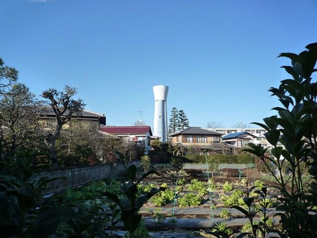 戸建て住宅の間に見える都公社祖師谷住宅の給水塔