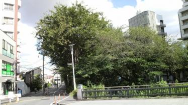 三鷹駅1-09