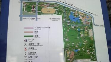 昭和記念公園2013秋 02