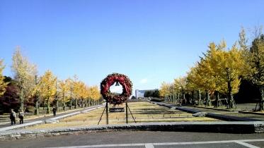 昭和記念公園2013秋 03