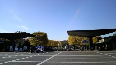 昭和記念公園2013秋 05