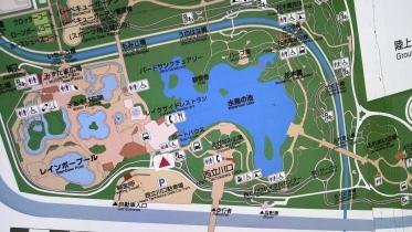 昭和記念公園2013秋 15