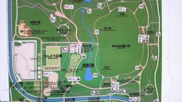 昭和記念公園2013秋 24