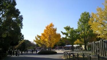 昭和記念公園2013秋 26
