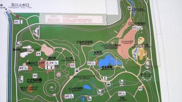 昭和記念公園2013秋 38