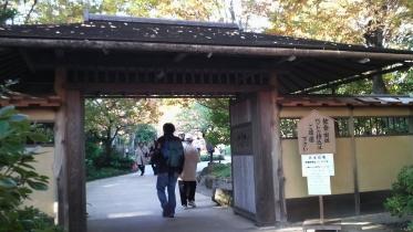 昭和記念公園2013秋 39