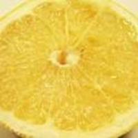グレープフルーツ clip_image002