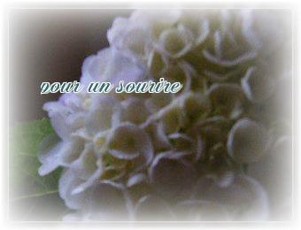 OBr6ZuS_Q_Civrr1371715521_1371716482.jpg