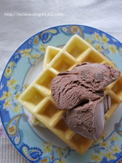 久々のワッフルonチョコアイス