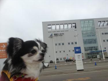 函館港に到着!