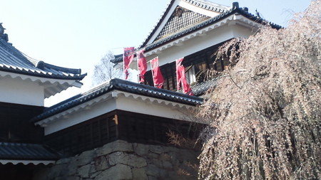 ueda_20130419091202.jpg