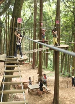 forest adventure①