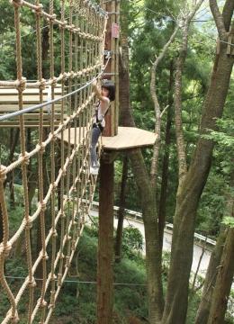 forest adventure②