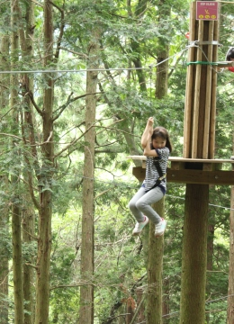 forest adventure③
