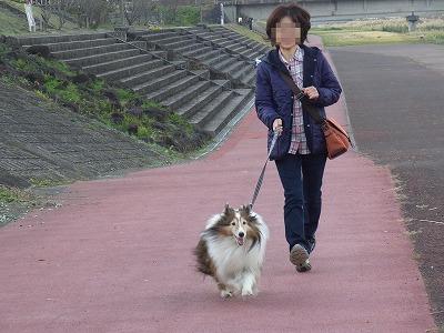 鶴駅伝の日