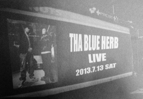 blue herb2