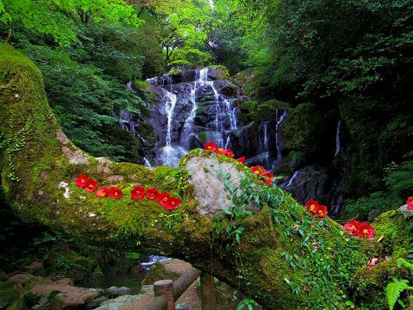 白糸の滝8