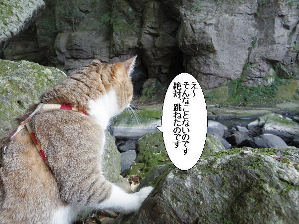 黄牛の滝11