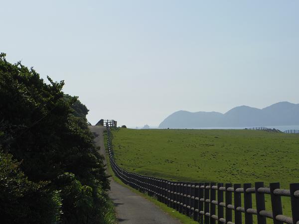 加部島20